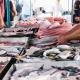 Vente de poisson frais